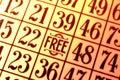 Bingo Card Royalty Free Stock Photo
