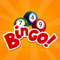 Bingo card with colourful balls and numbers.