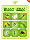 Bingo  with different insects 4 Royalty Free Stock Photo