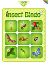 Bingo  with different insects 3 Royalty Free Stock Photo