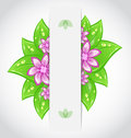 Bio concept design eco friendly banner with leaves Royalty Free Stock Photo