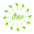 Bio hand drawn logo, label with green floral frame, with leaf and sprout. Vector illustration eps 10 for food and drink