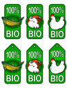 Bio Labels / Fish, Beef, Chicken Royalty Free Stock Photo