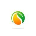 Bio organic green leaf logo
