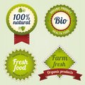 Bio retro labels set eco template vintage logo template Stock Image