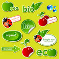 Bio sticker set Royalty Free Stock Photography