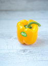 Bio yellow bell pepper single with copy space Stock Image