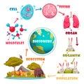Biological Hierarchy Cartoon Set