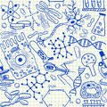 Biology doodles seamless pattern on school squared paper Royalty Free Stock Photography