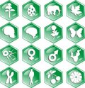 Biology icons Stock Photo