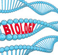 Biology word dna strand science learning the in a of to illustrate about biological matters and scientific topics Stock Photos