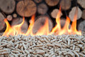 Biomass pellet in flames stock photo Royalty Free Stock Image