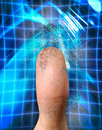 Biometric Identification Stock Photo