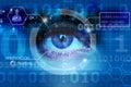 Biometric screening eye Royalty Free Stock Image