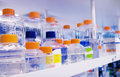 Biotechnology lab Royalty Free Stock Images