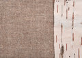 Birch bark on burlap background rude Royalty Free Stock Image