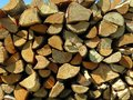 Birch firewood Royalty Free Stock Photography