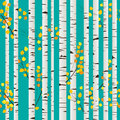 Birch forest pattern Royalty Free Stock Photo