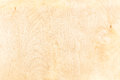 Birch plywood background high detailed wood texture series Stock Photography
