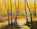Birch trees in a sunny forest palette knife artwork impressionism art original oil painting wood landscape beautiful solar road Royalty Free Stock Photo