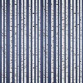 Birch wood pattern seamless tile Stock Photo
