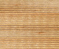 Birch wood section texture high resolution Royalty Free Stock Photo