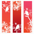 Bird banners Stock Photos