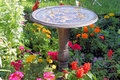Bird Bath Stock Image