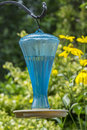 Bird bath in a garden backyard Royalty Free Stock Image