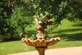 Scaly-breasted Lorikeet Birds ...