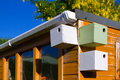 Bird boxes on garden shed Royalty Free Stock Photo