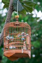 Bird in Cage Royalty Free Stock Photo