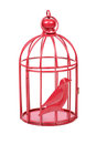 Bird cage Royalty Free Stock Photo