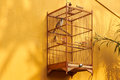 Bird cage on yellow wall Royalty Free Stock Photo