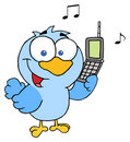 Bird calling Stock Photo