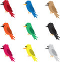 Bird Colors Royalty Free Stock Photos