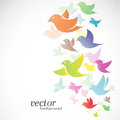 Bird design on white background vector illustration Stock Images