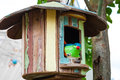 Bird doll in wood house Royalty Free Stock Image