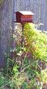 Bird feeder in backyard brown metal Royalty Free Stock Photo