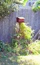 Bird feeder in backyard brown metal Stock Images