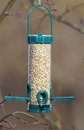 Bird feeder full of seeds hung in the tree Stock Photography