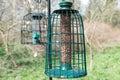 Bird feeder Royalty Free Stock Photo