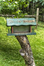 Bird feeder with tree background Royalty Free Stock Image