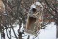 A bird feeder Royalty Free Stock Photo