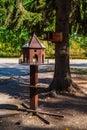 Bird feeders in a city park