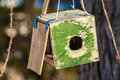 Bird feeders hanging on the tree help people to animals Stock Images