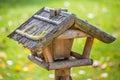 Bird feeders wooden in woods Royalty Free Stock Image