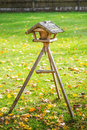 Bird feeders wooden in woods Stock Photography