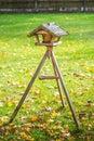 Bird feeders wooden in woods Stock Photography