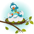 Bird feeding babies in nest vector illustration Royalty Free Stock Image